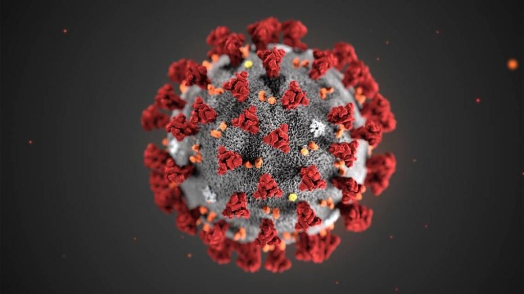 Confirmed coronavirus cases grow in Caribbean