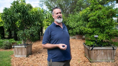 Florida horticulturists have plants robust and ready. The market is wilting