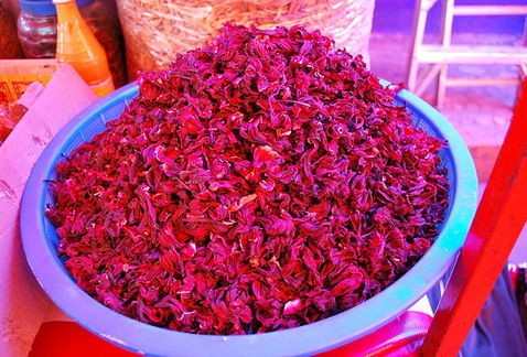 La flor de jamaica mata más bacterias que el cloro