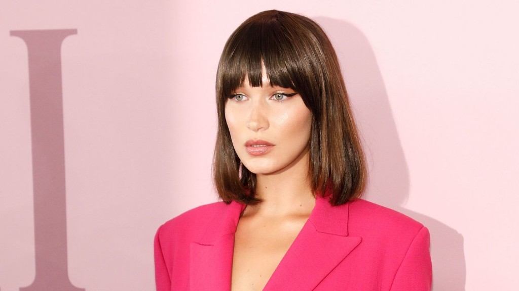 Bella Hadid Carried A Luxury Lunch Bag on The Red Carpet