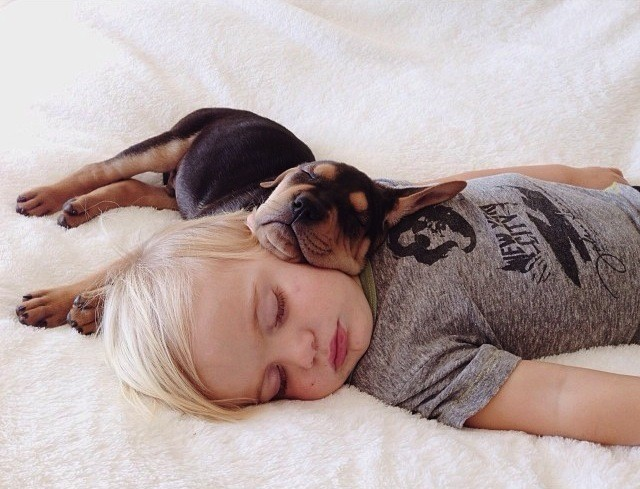 Adorable Photos of a Toddler Napping with His Puppy