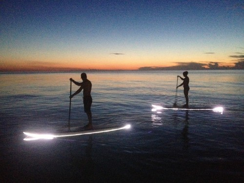 Innovative LED Paddleboards Offer Incredible Views of the Nighttime Sea