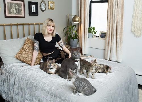 """Entrevista: Fotógrafa lucha contra el estereotipo de la """"señora de los gatos"""" con unos retratos muy cool"""