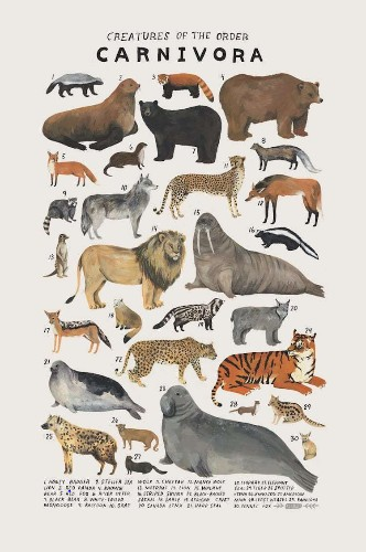 Delightful Posters Illustrate the Beautiful Diversity of the Animal Kingdom