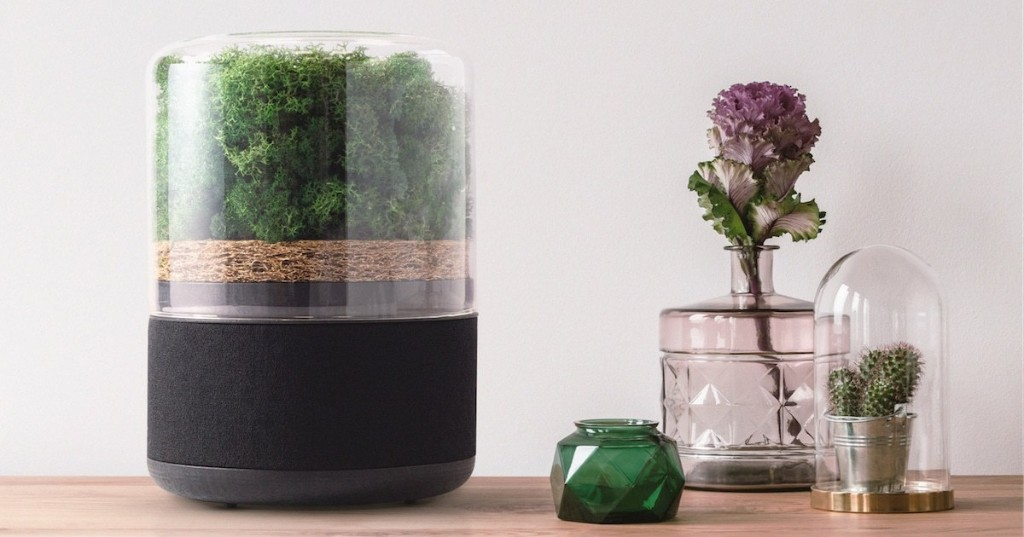 Sleek Air Purifier Uses a Tiny Forest to Sustainably Filter and Clean the Air Around You