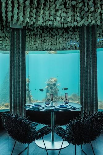 Stunning Underwater Restaurant Lets Guests Dine next to Ocean Life