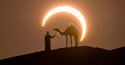 Perfectly Timed Photo Frames a Solar Eclipse Around a Man Leading a Camel in the Desert