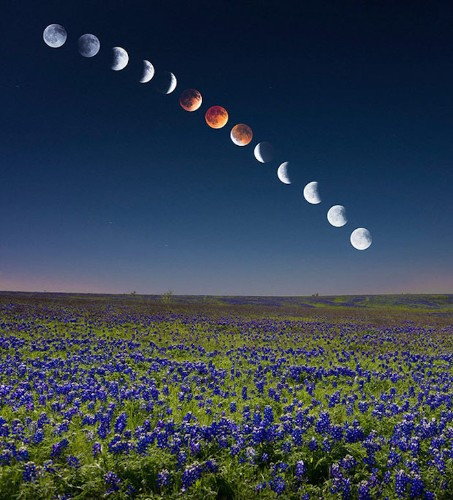 Stunning Composite Image of the Blood Moon Lunar Eclipse