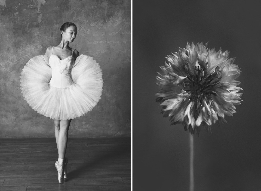 Side-By-Side Photos Reveal Stunning Connection Between Ballet Dancers and Blooming Flowers