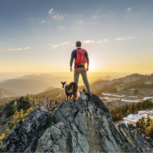 Heartwarming Photos Highlight Adventurous Bond Between Pups and Humans