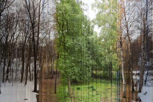 Incredible Photo Comprised of 3,888 Images Highlights Seasons in a Year