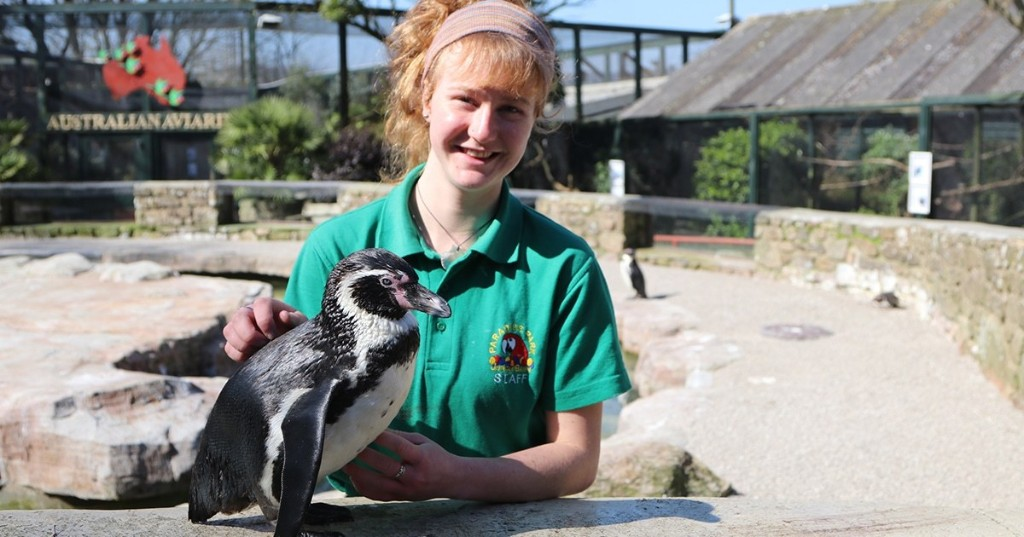Zookeepers Self-Isolate at Wildlife Park for 12 Weeks to Care for the Animals