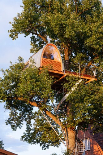 Domed-Shaped Tree House Accessed via a Winding Steel Staircase