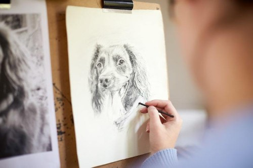 Learn How to Draw a Dog in 5 Simple Sketching Steps
