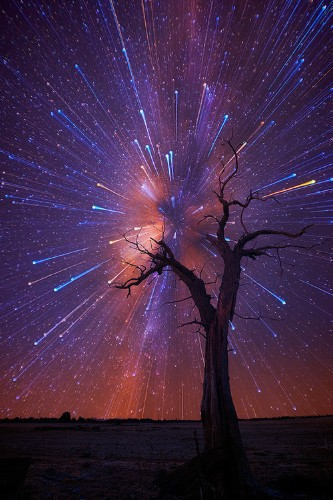 Amazing Startrails Bursting in the Night Sky