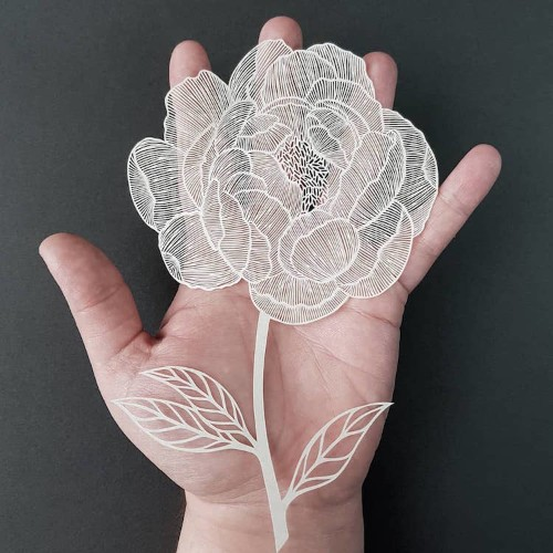 Interview: Artist Hand-Cuts Intricate Illustrations from Single Sheets of Paper