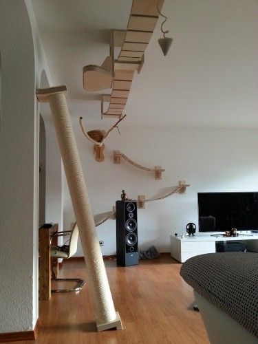 Rooms Transformed into Suspended Cat Playgrounds
