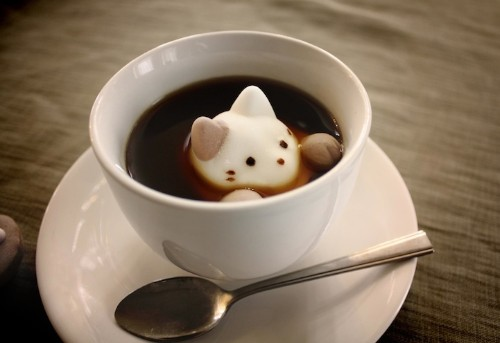 Cute Marshmallow Cats Float and Dissolve Inside Coffee Cups