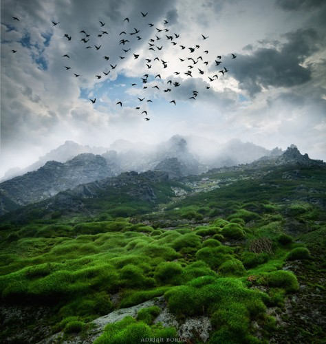 Beautifully Surreal Photo Manipulations of Nature by Adrian Borda