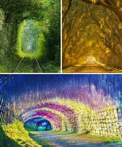 20+ Stunning Nature Tunnels That Are Like Walking Through a Fairy Tale