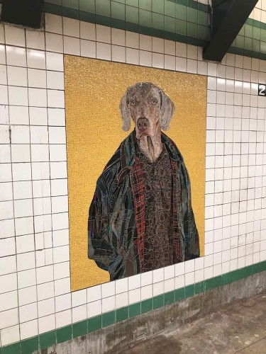 NYC Subway Station Gets Redesigned with Colorful Dog Mosaics