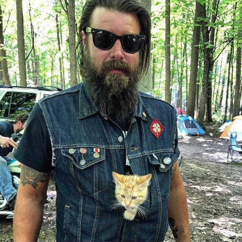 Biker Rescues Tiny Injured Kitten and Goes on Cross-Country Road Trip Together