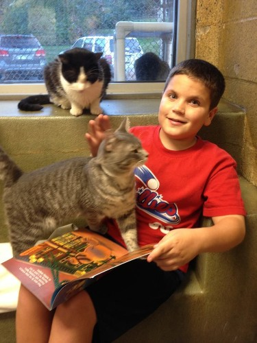 Adorable Kids Learn to Read While Soothing Cute Shelter Cats