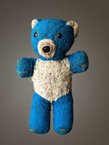 Adorable Portraits of Much Loved Stuffed Animals