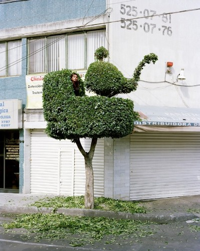 Playful Portraits of People Posing in Topiary Trees