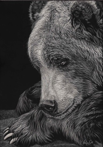 Beautiful Scratchboard Portraits of Animals by Allan Ace Adams (Every Line is a Scratch)