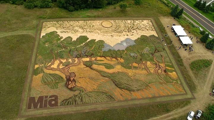Artist Cultivates 1.2-Acre Field Into Massive Crop Art Paying Homage to Van Gogh