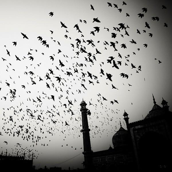 Hauntingly Beautiful Black & White Photos of the Taj Mahal