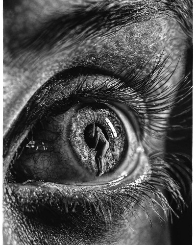 Artist's Giant Pencil Drawings Blur the Line Between Hyperrealism and Surrealism