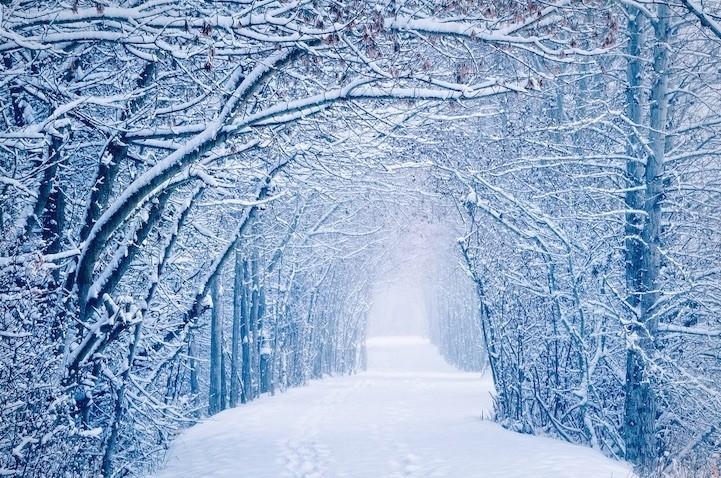 19 Breathtaking Photos of Winter Wonderlands Around the World
