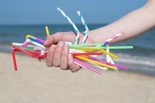 Francia planea eliminar todos los plásticos de un solo uso para 2040