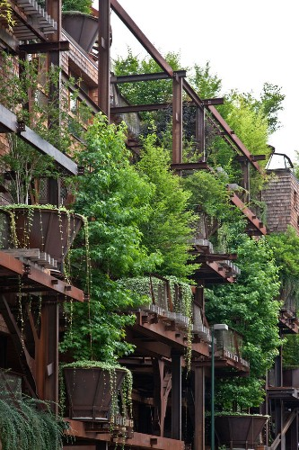 150 Trees Protect This Apartment Complex from Noise and Pollution