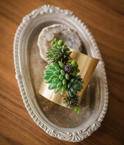 Sustainable Jewelry Grows a Jungle of Living Succulents