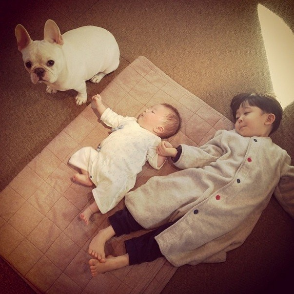 Adorable Japanese Boy and His French Bulldog Welcome a Baby Brother