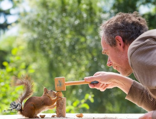 Photographer Captures Delightfully Candid Photos of Wild Squirrels Being Very Curious