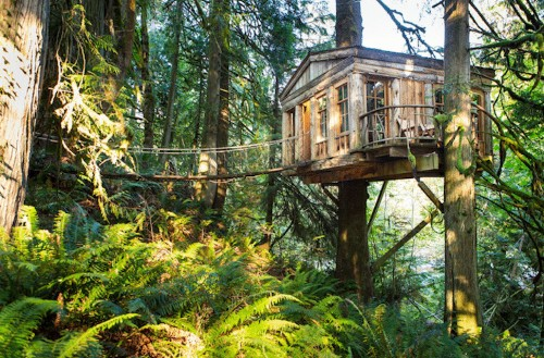 Nature-Inspired Resort Offers Treehouse Accommodations