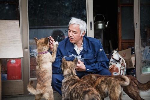The Selfless Hero Who Braved Radiation and Stayed Behind to Feed Fukushima's Abandoned Animals