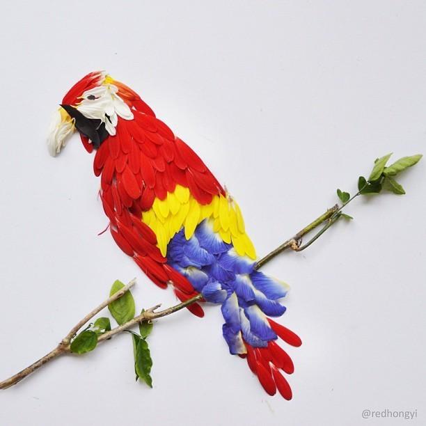 Red Hong Yi's Playful Exotic Birds Made of Flower Petals