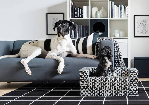IKEA's Pet Furniture Collection Lets Your Furry Friends Lounge in Style