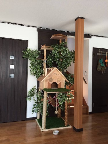 DIY Cat Tree Offers a Creative Alternative to Conventional Scratching Posts and Beds