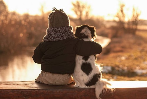 Polish Mother Captures Heartwarming Photos of Her Son and Their Three Adopted Dogs