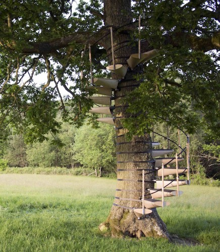 Modular Staircase Attaches to Any Tree for Easy Access to Top