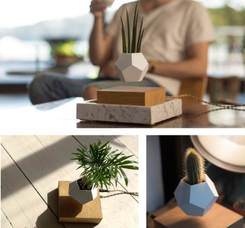 Innovative Planters Let You Grow a Levitating Garden That Rotates in Mid-Air