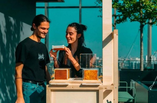 Interview: Startup Creates Modern Compact Beehive to Make Beekeeping More Accessible