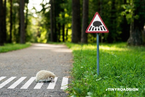 Tiny Road Sign Remind City-Goers That They Share This Space with Animals