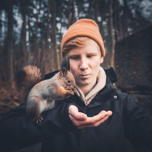 21-Year-Old Photographer Captures Intimate, Soulful Portraits of Wild Forest Animals